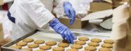Operador protegido colocando galletitas en una bandeja