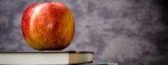 Manzana sobre libros de texto